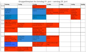 Gruppetimer fra 01. - 25. juni
